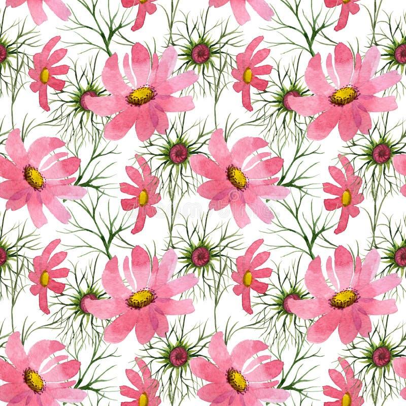Download Estampado De Plores Del Kosmeya Del Wildflower En Un Estilo De La Acuarela Stock de ilustración - Ilustración de pétalo, licencia: 100526641