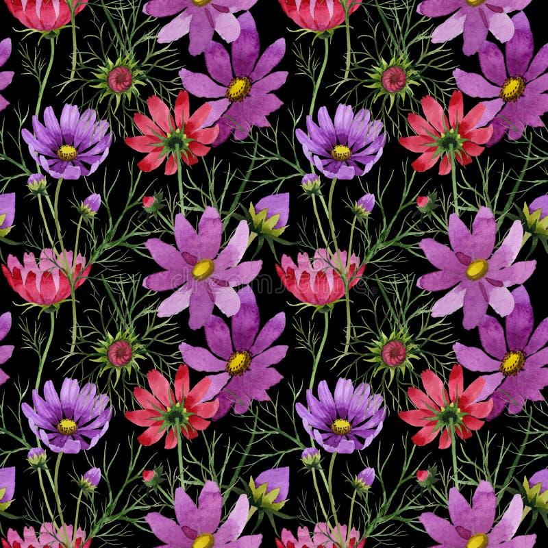 Download Estampado De Plores Del Kosmeya Del Wildflower En Un Estilo De La Acuarela Stock de ilustración - Ilustración de planta, decoración: 100526649