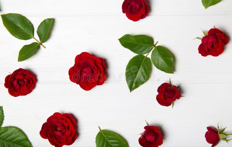 Estampado de plores hecho de rosas rojas y de hojas fotografía de archivo