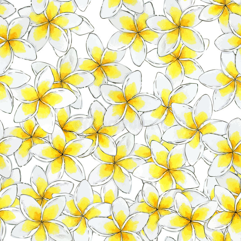 Estampado de plores inconsútil de la acuarela Estampado de flores del Plumeria libre illustration