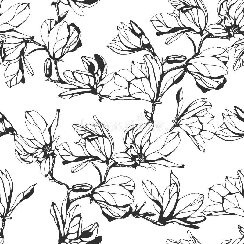 Estampado de plores inconsútil de la magnolia en un fondo blanco Mano dracma ilustración del vector
