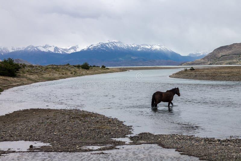 Estancia Cristina Patagonia Argentina foto de archivo libre de regalías