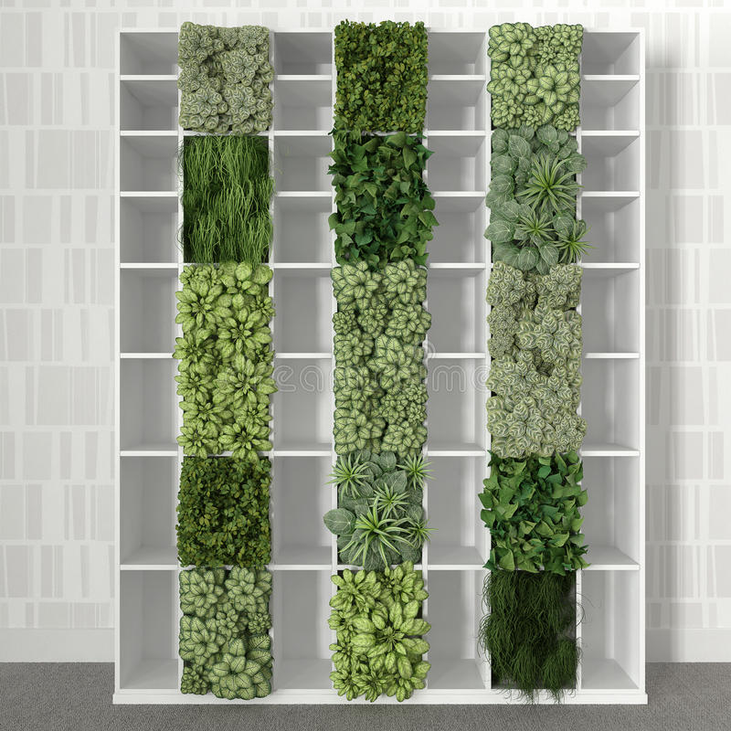 Estante com plantas ilustração stock