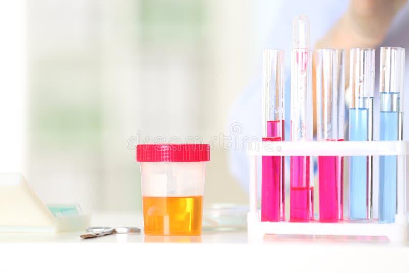 Estante con los tubos de ensayo y el tarro en la tabla en laboratorio imagen de archivo libre de regalías