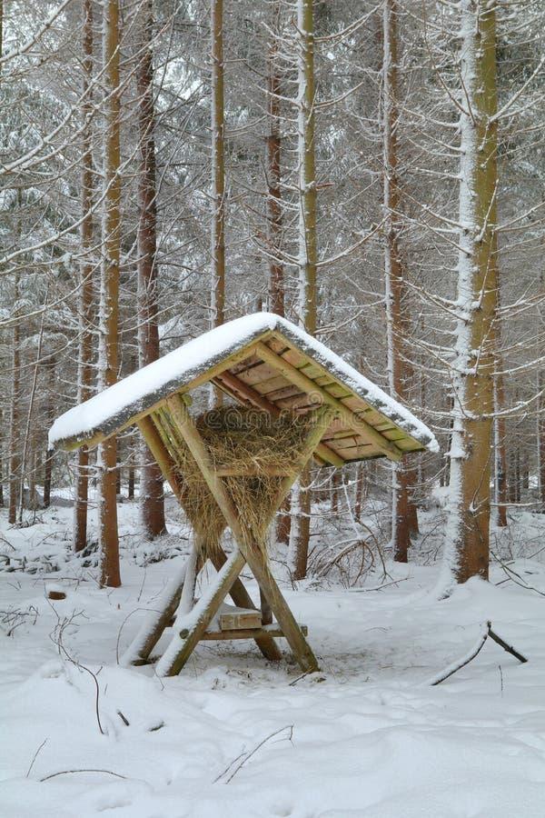 Estante de alimentación del heno en bosque del invierno fotos de archivo