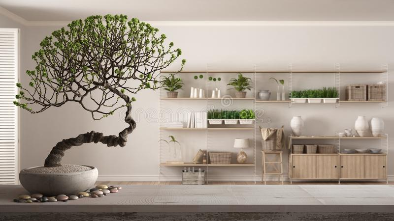 Estante de mesa de madera pintada con piedras y bonsai de flor macedonia, flores blancas, salón de estilo minimalista con bibliot stock de ilustración