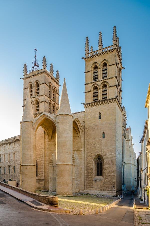 Estasi al Saint Pierre la cattedrale a Montpellier immagini stock libere da diritti