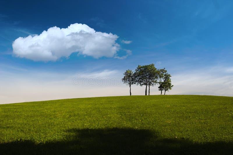 Estate, alberi, collina e cielo blu fotografie stock