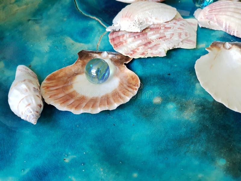Estate ceramica della spiaggia di nautilus del vassoio del globo della conchiglia del turchese blu di marmo di vetro delle copert fotografia stock libera da diritti