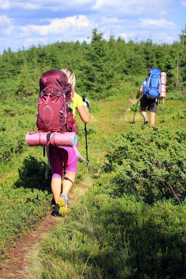 Estate che fa un'escursione nelle montagne fotografie stock libere da diritti