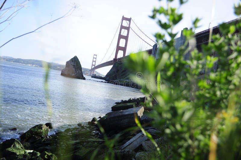 Estate del ponte del portone dell'oro immagine stock libera da diritti