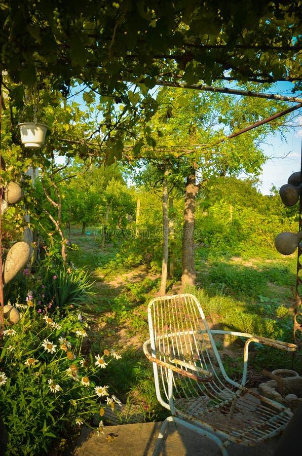 Estate di rilassamento verde del giardino della nonna della sedia immagine stock