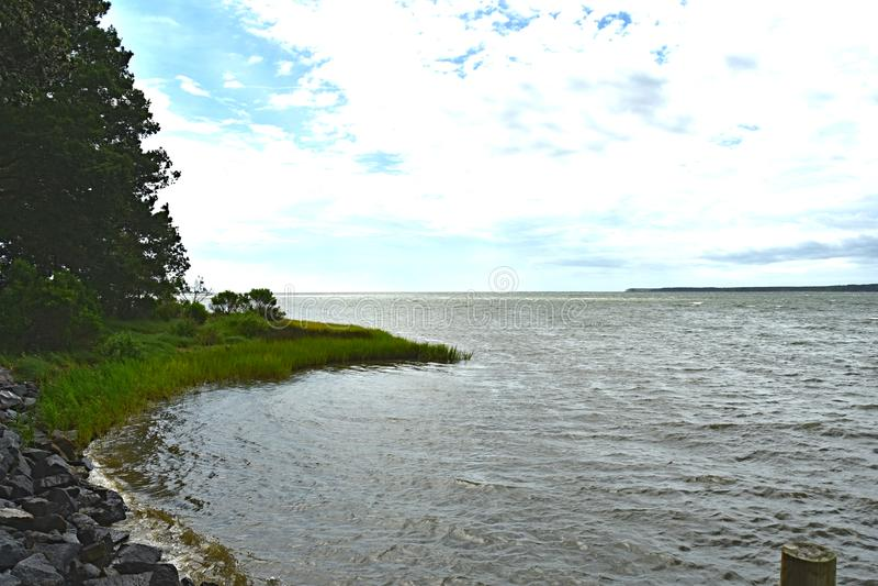 Estate di vista della palude della baia di Chesapeake fotografia stock libera da diritti