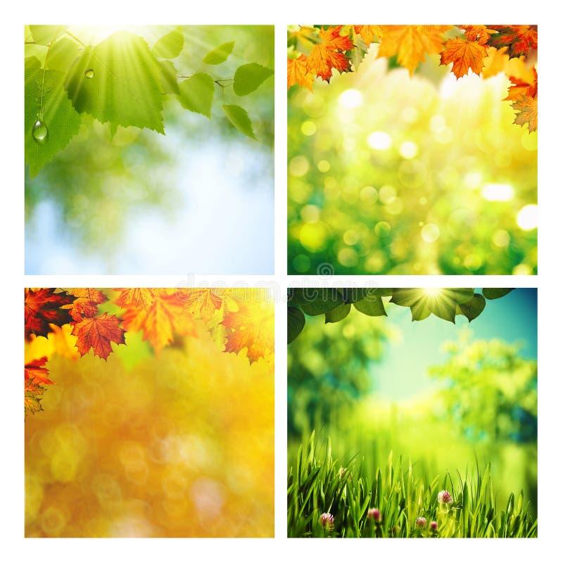 Estate ed autunno immagini stock libere da diritti