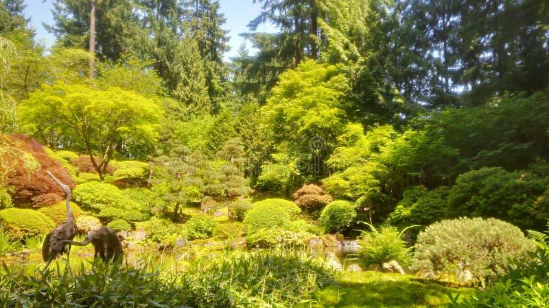 Estate giapponese del giardino di Portland fotografia stock libera da diritti