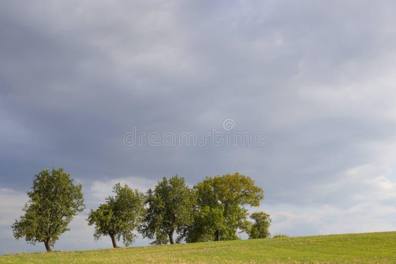 Estate nuvolosa fotografia stock