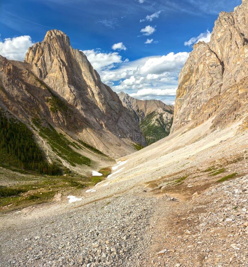 Estate panoramica verticale del Canada del parco nazionale di Rocky Mountain Wilderness Landscape Banff fotografia stock libera da diritti