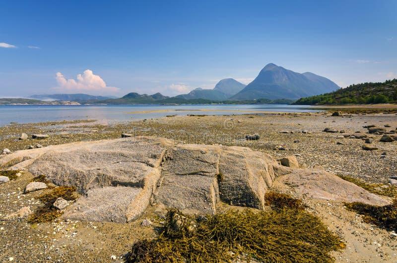 Estate sulla costa del fiordo del mare di Norvegia fotografia stock libera da diritti