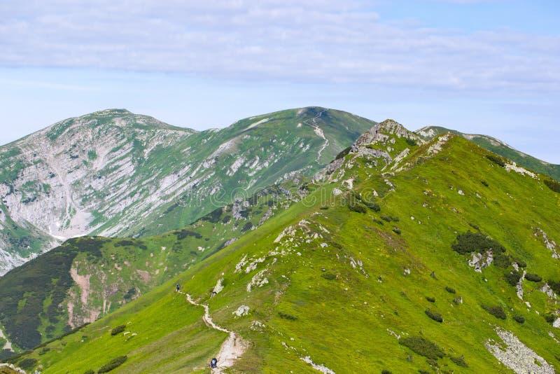 Estate sulle montagne di Tatra fotografie stock libere da diritti