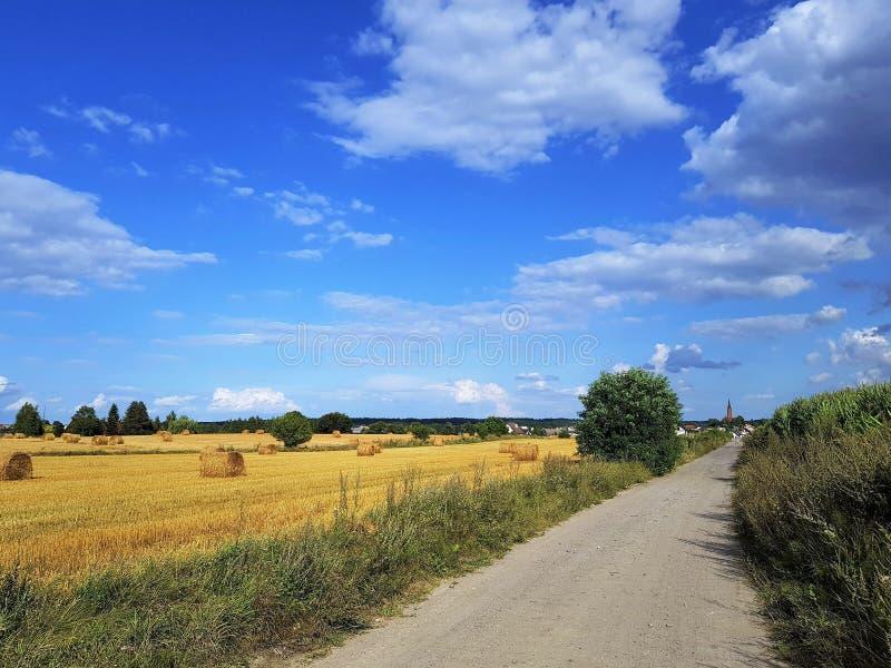 Estate in Zblewo fotografia stock
