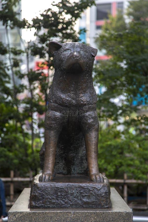Estatua conmemorativa de Hachiko en Shibuya, Tokio fotografía de archivo