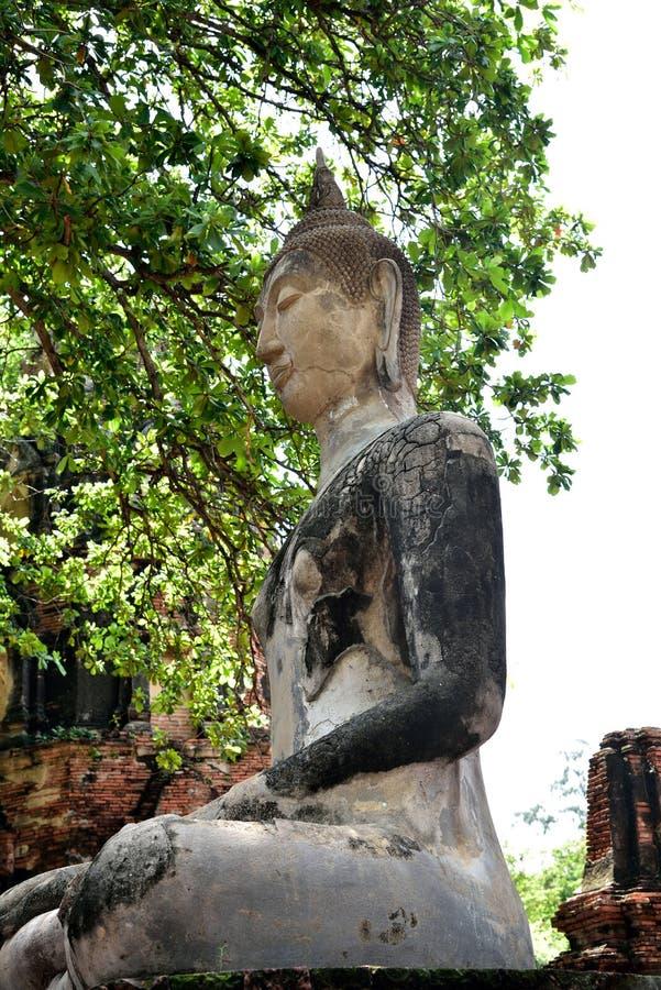 Estatua de Buda in situ imagen de archivo libre de regalías