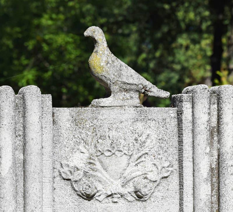 Estatua de la paloma en la piedra sepulcral imágenes de archivo libres de regalías