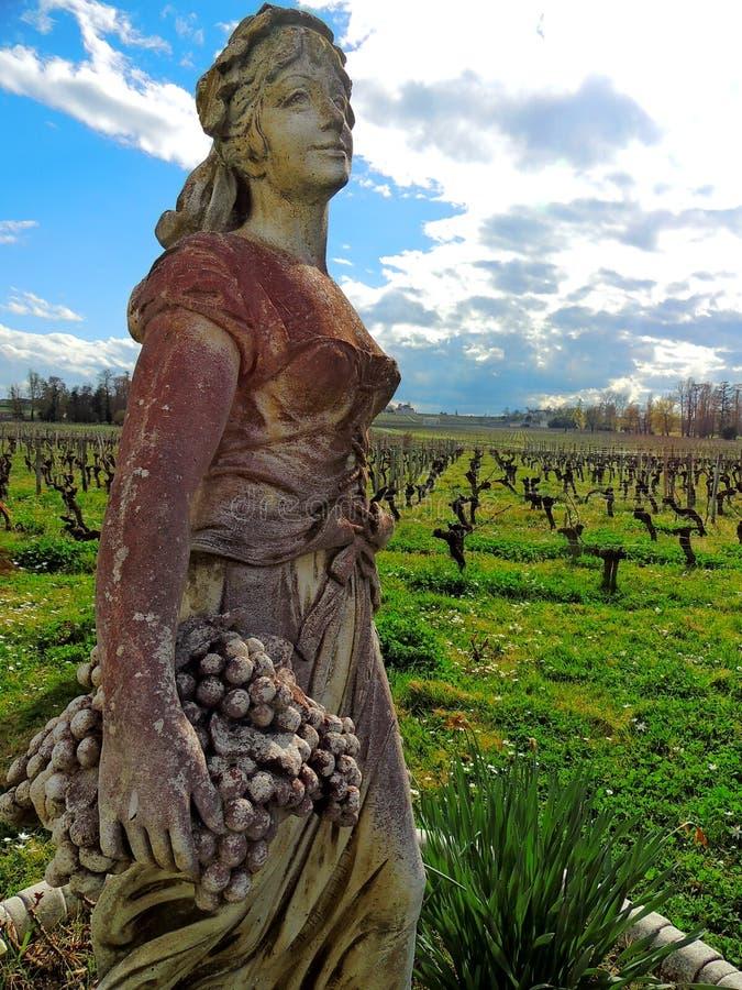 Estatua hermosa de una muchacha que recolecta las uvas en un fondo de viñedos y del cielo azul imagenes de archivo