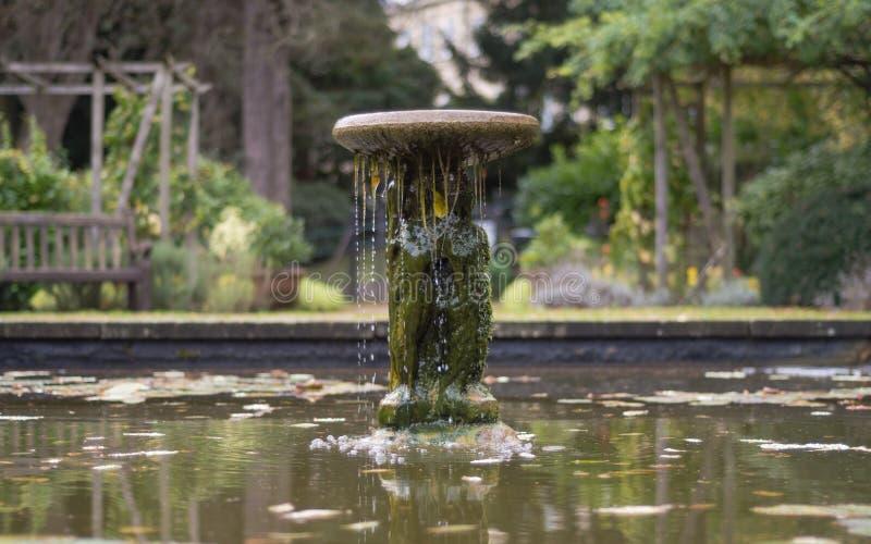 Estatua y fuente en rey George V Memorial Garden, baño foto de archivo