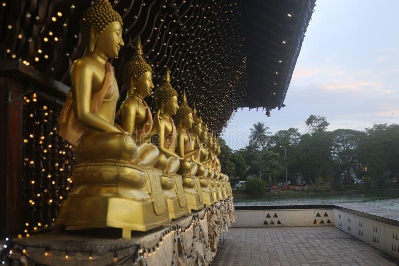 Estatuas de Buda en Seema Malaka Temple, Colombo, Sri Lanka Gangarama, de oro imágenes de archivo libres de regalías