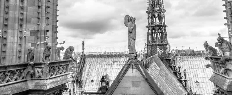 Estatuas de la g?rgola del panorama de Notre Dame fotografía de archivo libre de regalías