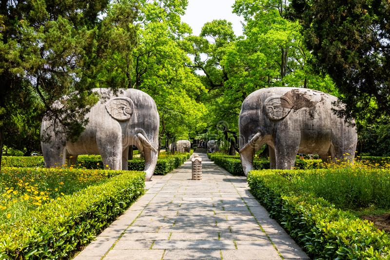 Estatuas del elefante de la manera sagrada en Ming Xiaoling Mausoleum, situado en el soporte Zijin, provincia de Nanjing, Jiangsu foto de archivo