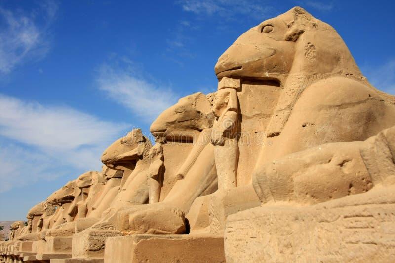 Estatuas en el templo de Karnak imagen de archivo