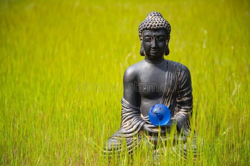 Estatueta da Buda com bola de cristal da terra na natureza foto de stock royalty free