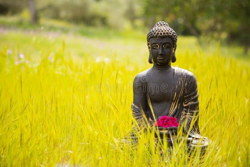 Estatueta da Buda com flores vermelhas fotos de stock