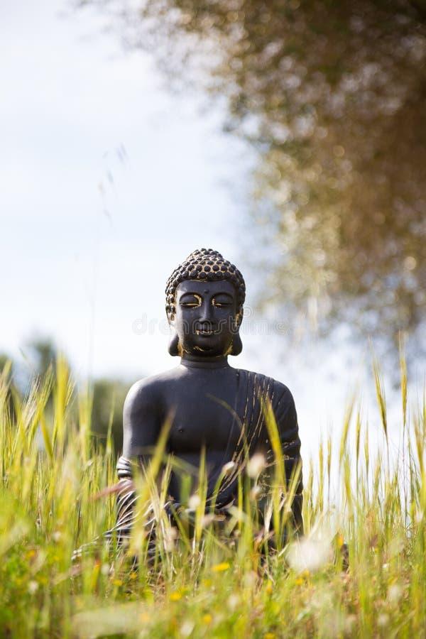 Estatueta da Buda no meio do prado verde imagem de stock