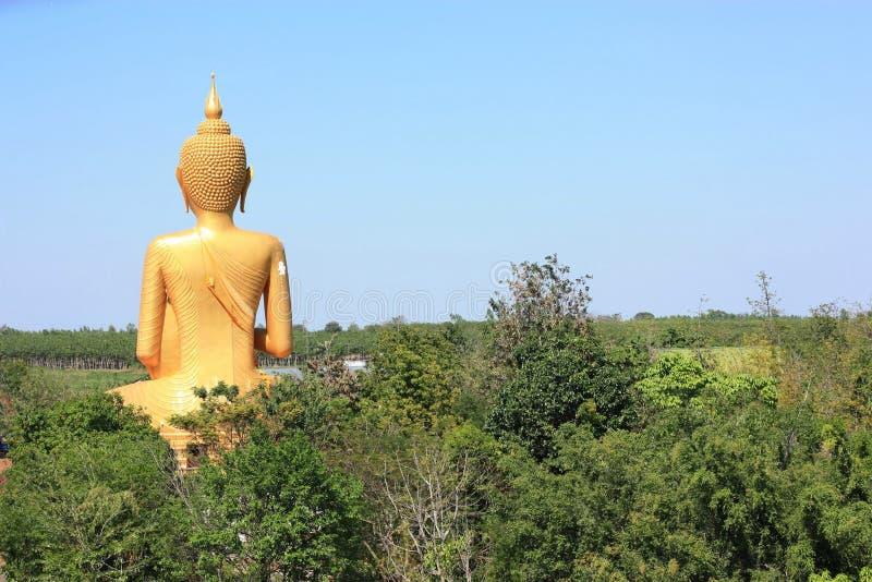 Estatura de Buda imagen de archivo
