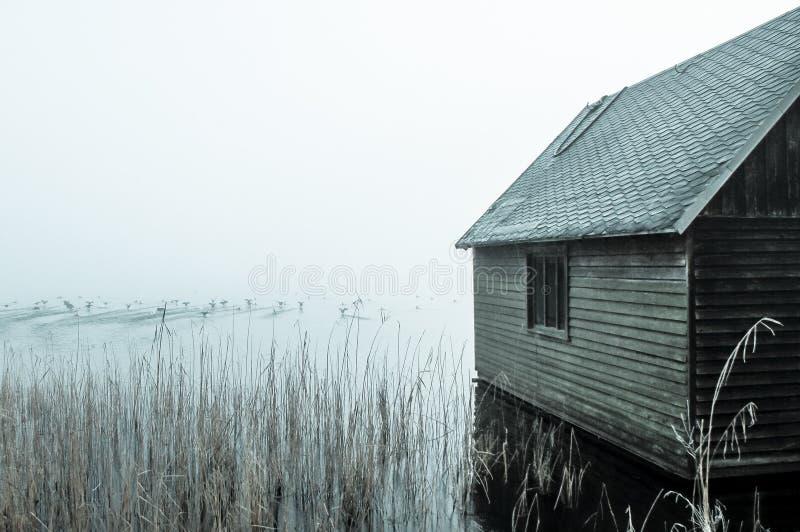 Lago no alvorecer fotografia de stock