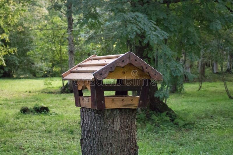 Este comedor para los pájaros en el bosque imagenes de archivo