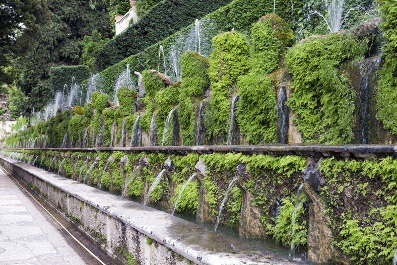 Este16th--centuryspringbrunn för villa D 'och trädgård, Tivoli, Italien Lokal för Unesco-världsarv royaltyfria foton