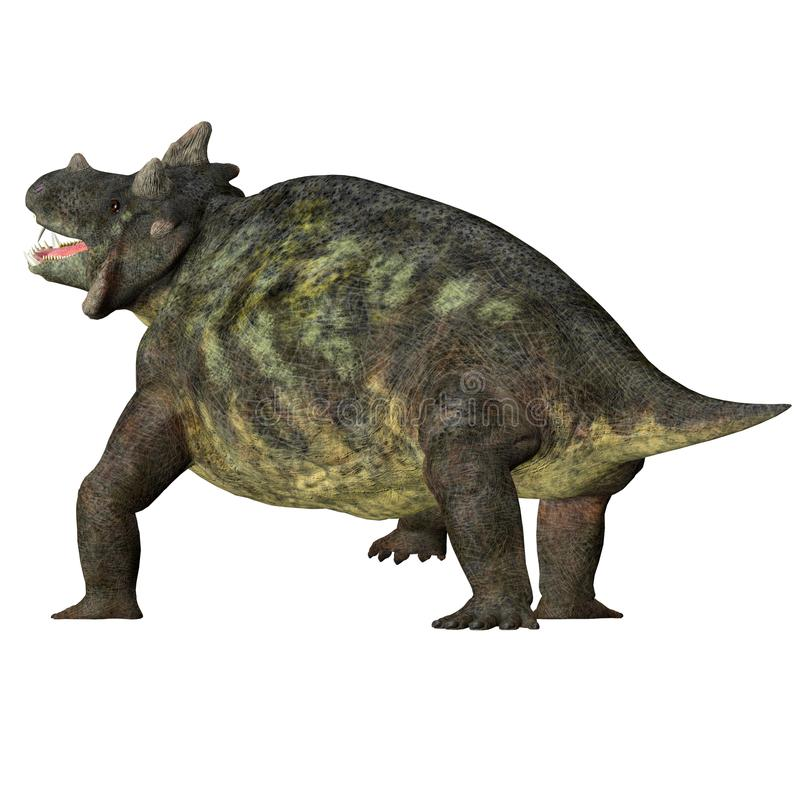 Estemmenosuchus mirabilis Dinosaur Tail. Estemmenosuchus mirabilis was an omnivorous therapsid dinosaur that lived in the Permian Period of Russia stock illustration