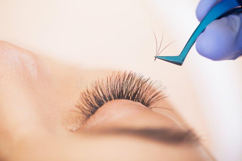 Estensioni dei cigli Cigli falsi Procedura di estensione del ciglio Stilista professionista che allunga le sferze femminili immagini stock libere da diritti