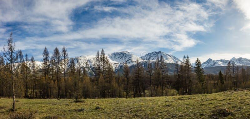 Estepa de Kurai y sus montañas circundantes con los picos nevosos, Altai, Rusia foto de archivo libre de regalías