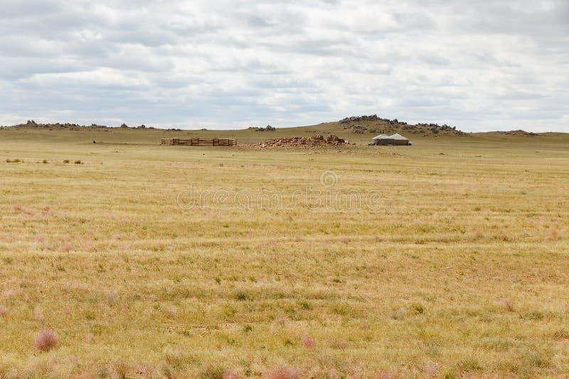 Estepa mongol, paisaje hermoso fotografía de archivo libre de regalías