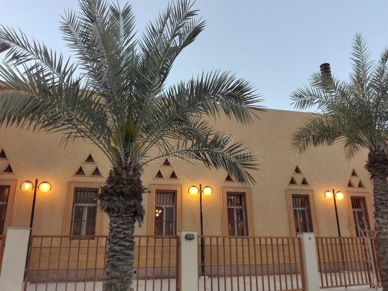 Esterno della moschea con differenti finestre, palme al crepuscolo immagini stock libere da diritti