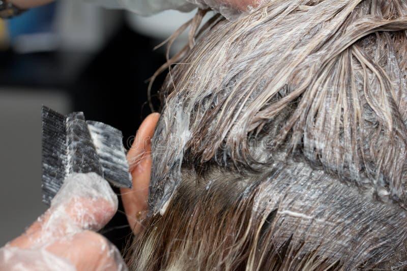 Estetista che applica tintura per capelli sui capelli femminili del ` s del cliente fotografia stock
