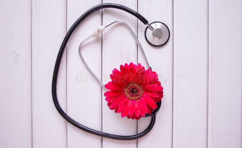 Estetoscópio médico com a flor no fundo de madeira claro imagens de stock royalty free