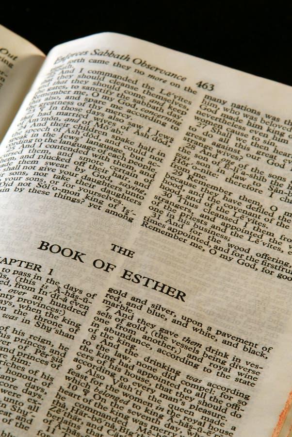 Esther z biblii zdjęcie royalty free