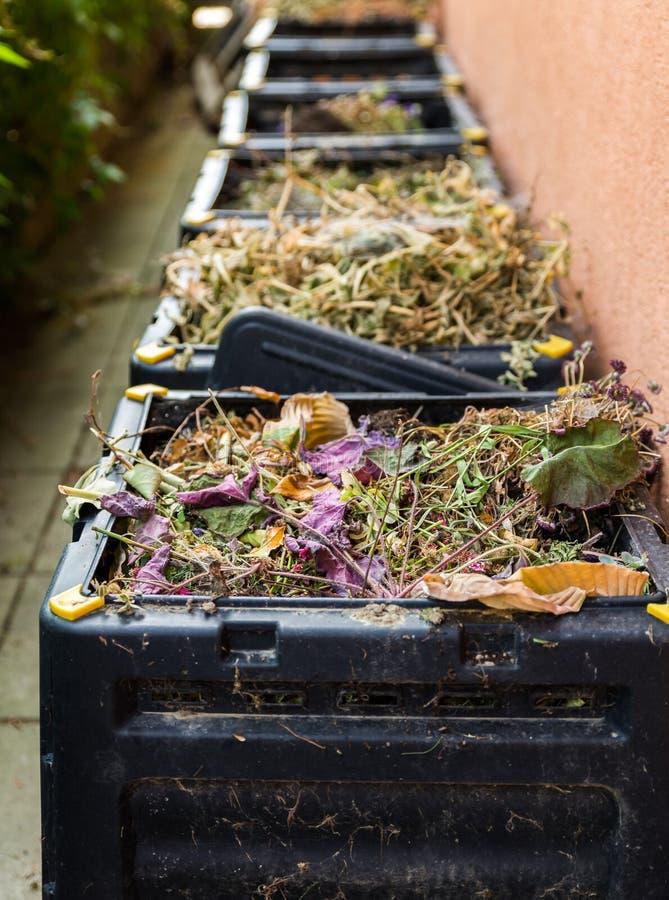 Estiércol vegetal, basura en compartimiento imagen de archivo