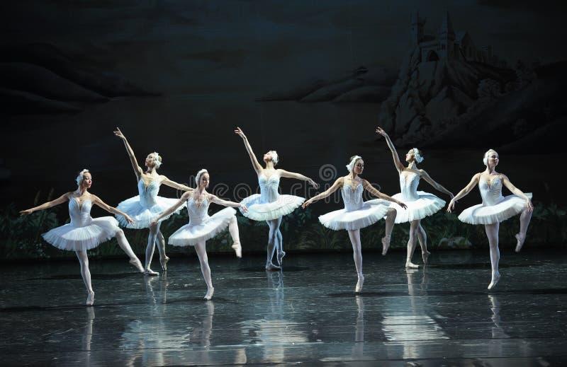 Esticar-bailado O Lago das Cisnes fotos de stock royalty free